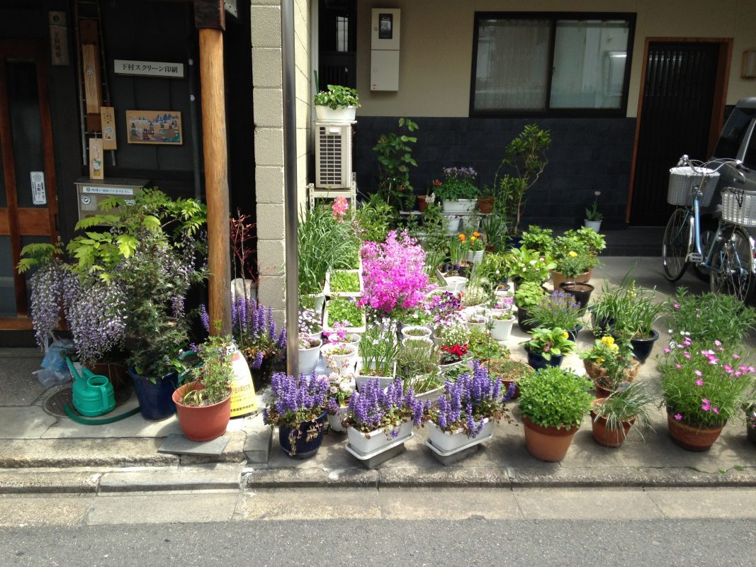 kiku-obata_gardens-without-a-garden-kyoto_01